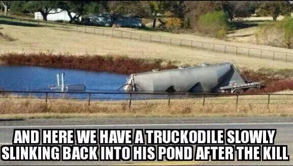 Truckodile.jpg