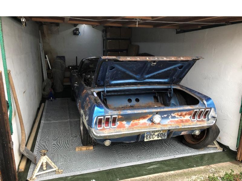 Mustang15-01-20213.jpg