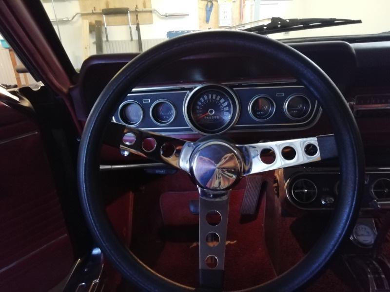 Mustang4.jpg