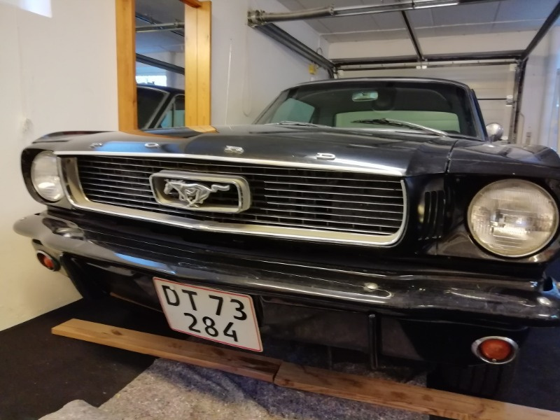 Mustang7.jpg